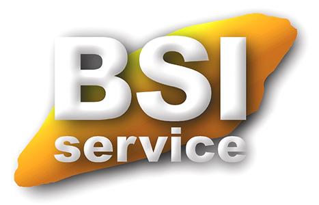 Bsi Service AS